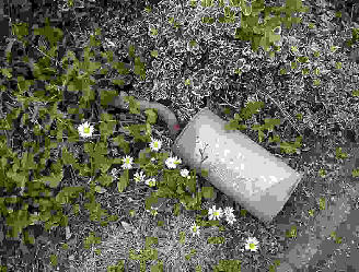 A discarded car's silencer laying in the grass