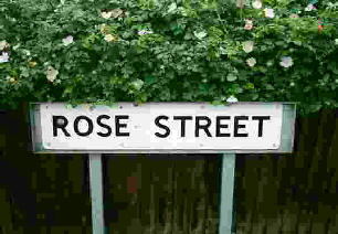 Roses growing behind a Rose Street, street sign